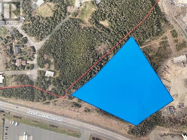 450 East White Hills Road, St. John's, A1A5X7, ,Business,For sale,East White Hills,1238106