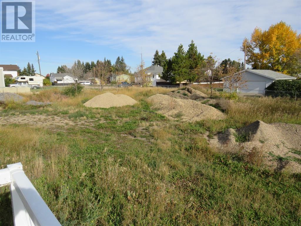 4616 51 Avenue, Alix, Alberta  T0C 0B0 - Photo 10 - A1154364