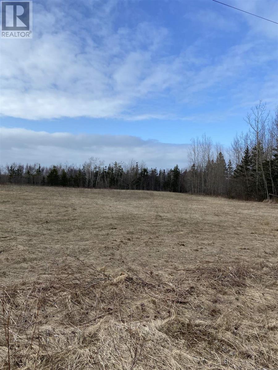 Lot Daniels Road, Mount Hanley, Nova Scotia  B0S 1P0 - Photo 1 - 202108395