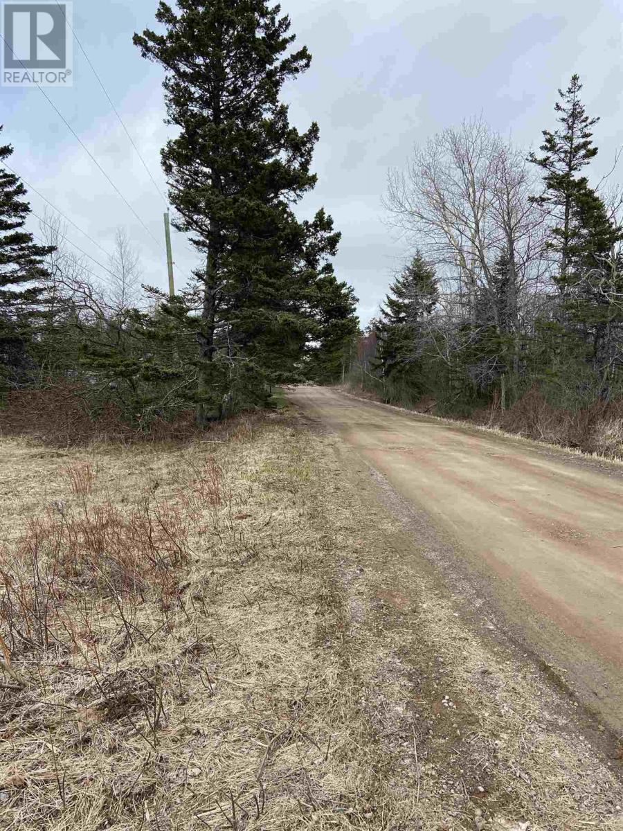 Lot Daniels Road, Mount Hanley, Nova Scotia  B0S 1P0 - Photo 2 - 202108395