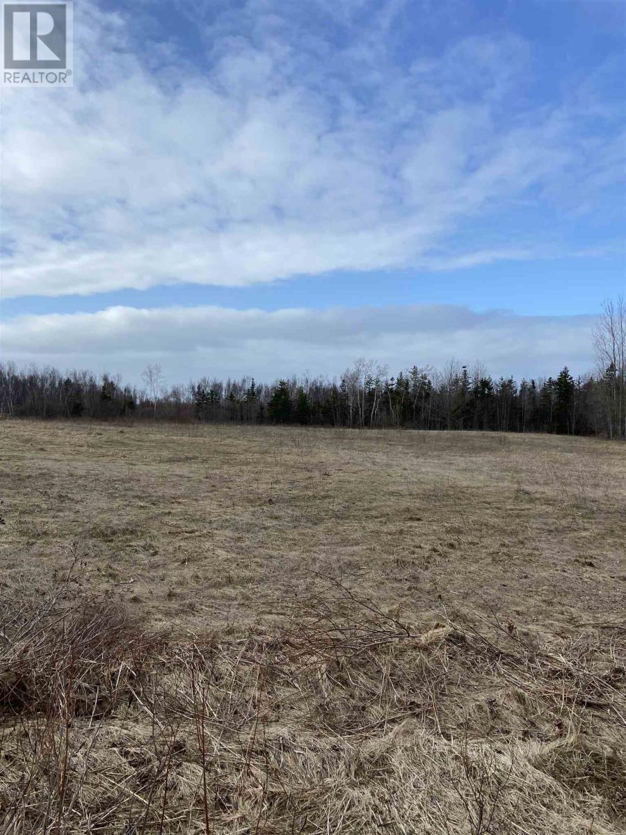 Lot Daniels Road, Mount Hanley, Nova Scotia  B0S 1P0 - Photo 3 - 202108395
