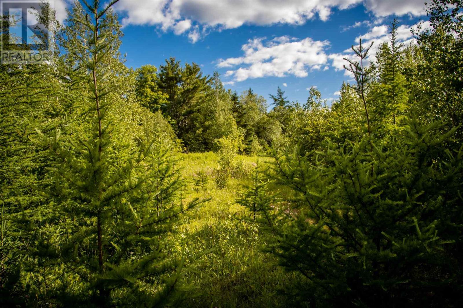 Lot A5 Aylesford Road, Lake Paul, Nova Scotia  B0P 1C0 - Photo 1 - 202115393