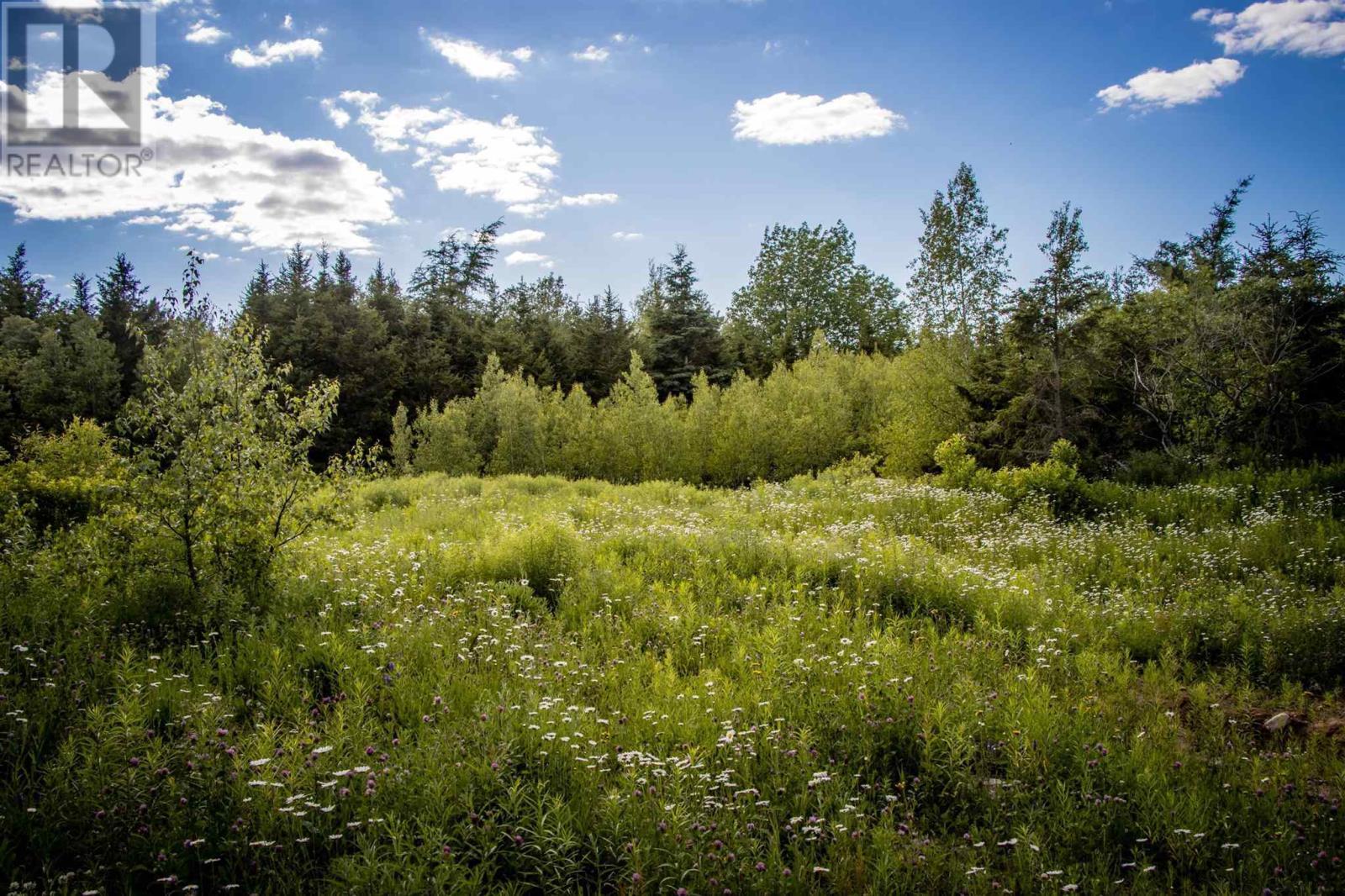 Lot A6 Aylesford Road, Lake Paul, Nova Scotia  B0P 1C0 - Photo 1 - 202115394
