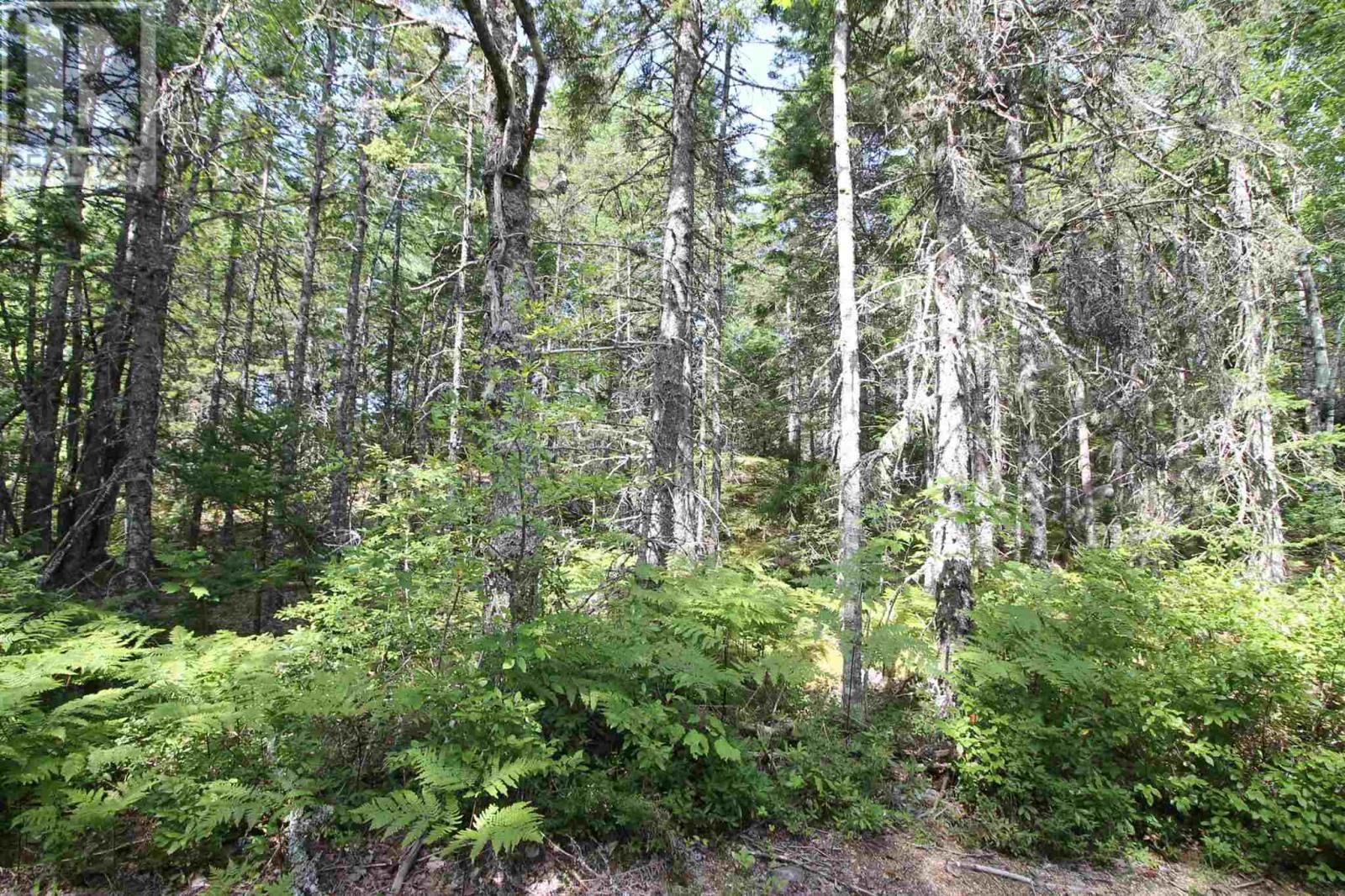22 Fisher Lake Road, South Milford, Nova Scotia  B0S 1A0 - Photo 10 - 202102975