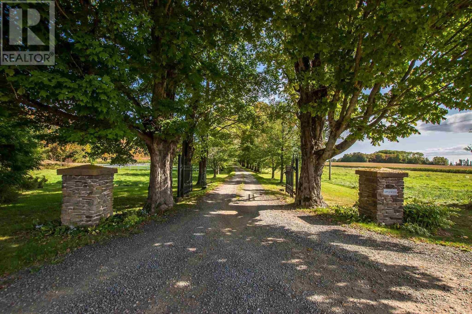 792 Bligh Road, Woodville, Nova Scotia  B0P 1G0 - Photo 6 - 202124602